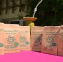 Ayurvedic Healing Herbs