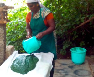 Besides employing local villagers aurospirul has also launched a program to introduce spirulina to local village schools to nourish the children.