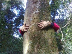 mate climbing tree